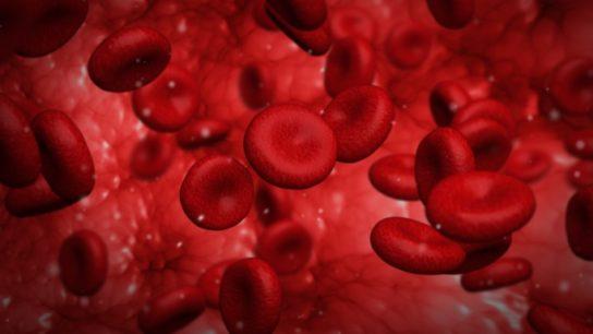 Platelet Transfusion Clopidogrel Ticagrelor