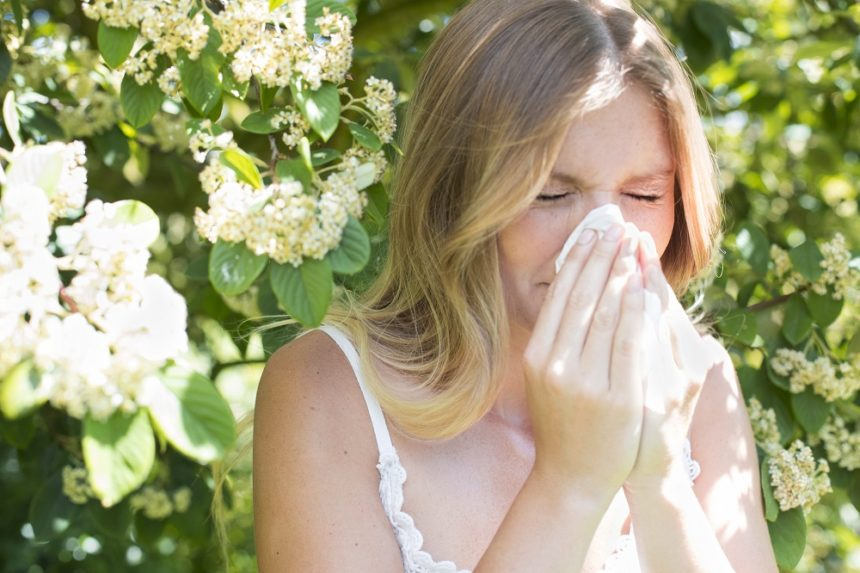 Seasonal allergy tips