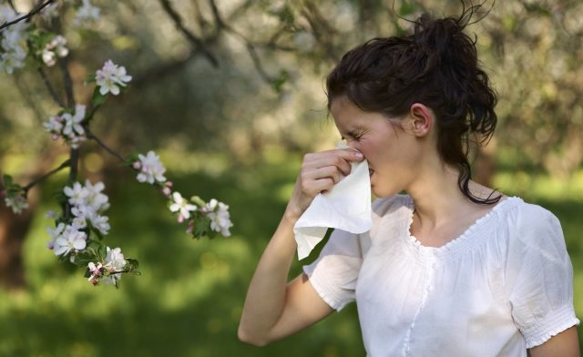 Clinicians can use tips from the ACAAI to help patients manage their allergy symptoms.