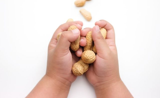 A child holding peanuts