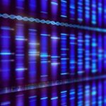 The first multitumor exceptional responder program in Australia is under way, adding to the growing worldwide effort to identify patient DNA changes and biomarkers of response.